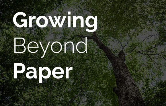 Growing Beyond Paper-Based Warehouse Management Systems